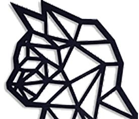 Netkat